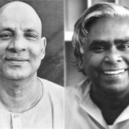 Sivananda teachings