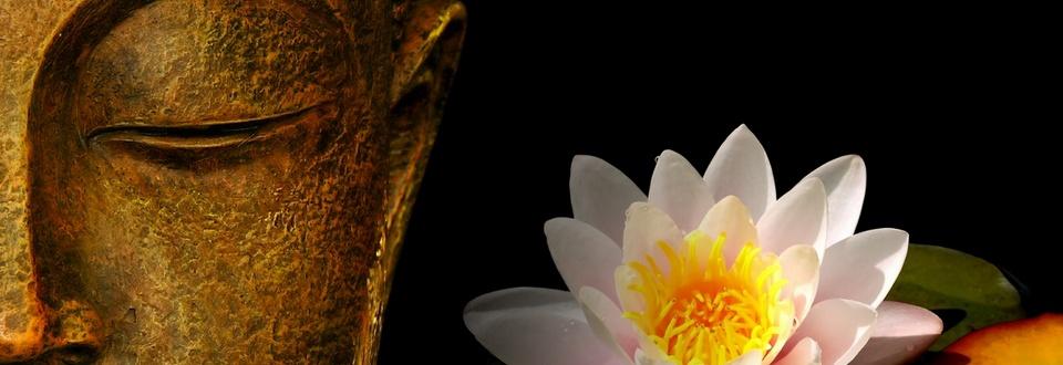 Scopri la Mindfulness
